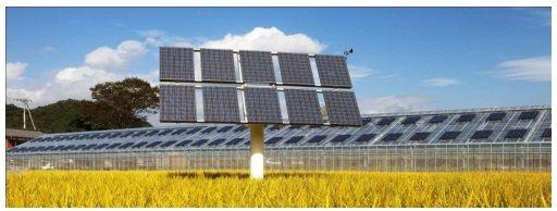 農地に設置した追尾型の太陽光発電システム